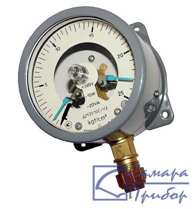ДМ (ДВ, ДА) 2010Сг манометр показывающий сигнализирующий
